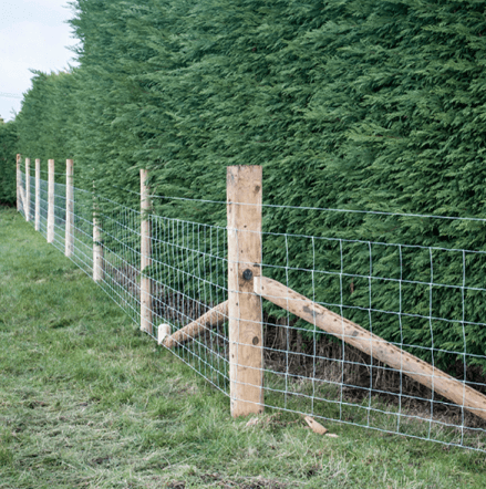 Stock Fencing (mild steel)